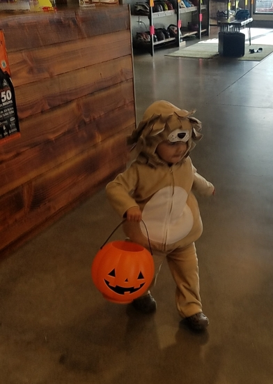 Lion costume from Carter's